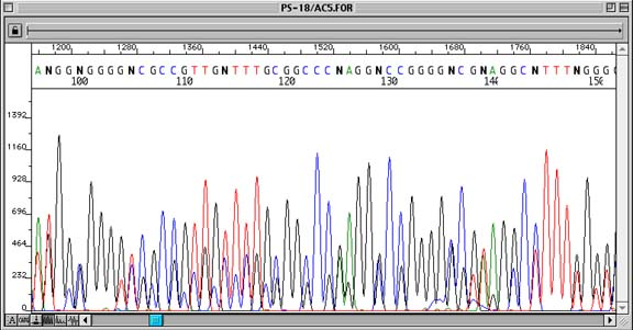 Troubleshooting DNA Sequencing: Evaluating Sanger DNA Sequencing